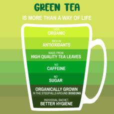 Daehan Tea Organic Green Tea 3